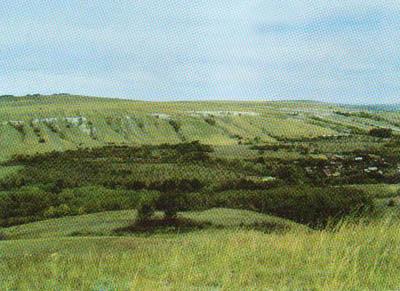 Урочище ханевка саратовская область